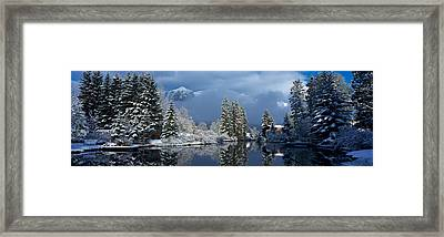 Reflection Of Tree In A Creek, Spring Framed Print