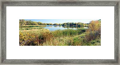 Reflection Of Trees In Water, Odana Framed Print by Panoramic Images