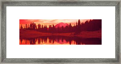 Reflection Of Trees In Water, Tipsoo Framed Print