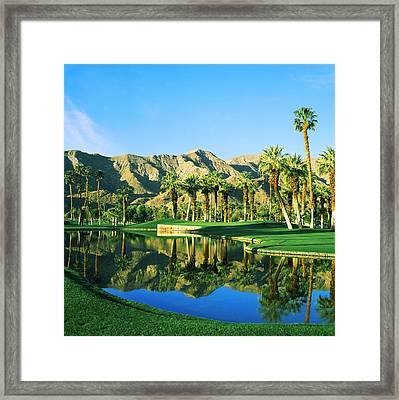Reflection Of Trees On Water In A Golf Framed Print