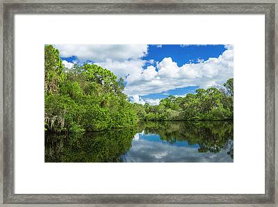 Reflection Of Trees On Water, South Framed Print by Panoramic Images