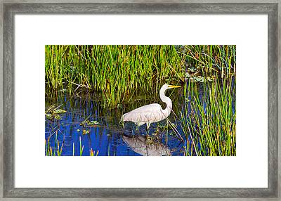 Reflection Of White Crane In Pond Framed Print by Panoramic Images