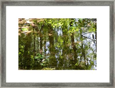 Reflection Of Woods Framed Print by Sonali Gangane