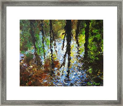 Reflection Framed Print by Peter Plant