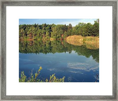 Framed Print featuring the photograph Reflection by Teresa Schomig