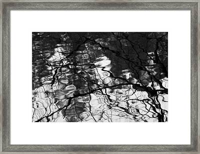 Framed Print featuring the photograph Reflection by Yulia Kazansky