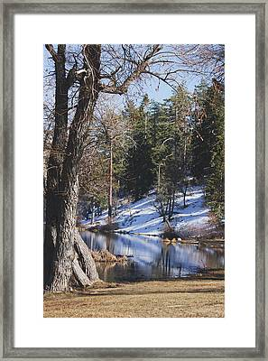 Reflection...in The Water Framed Print by Ivete Basso Photography