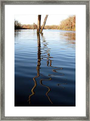 Reflections 1 Framed Print by Jamie Seul