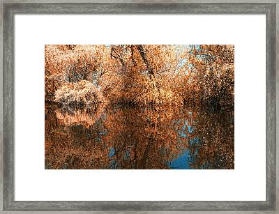 Reflections 1 Framed Print by Vessela Banzourkova