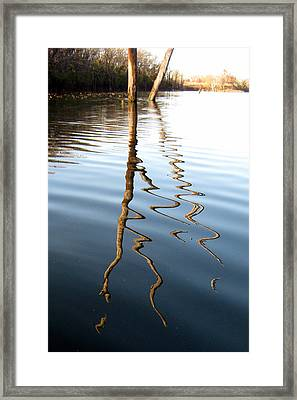 Reflections 2 Framed Print by Jamie Seul