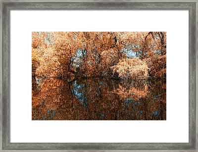Reflections 2 Framed Print by Vessela Banzourkova