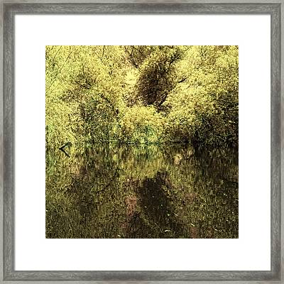 Reflections 4 Framed Print by Vessela Banzourkova