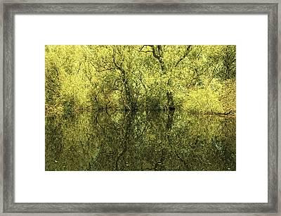 Reflections 5 Framed Print by Vessela Banzourkova