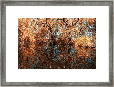 Reflections 6 Framed Print by Vessela Banzourkova