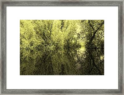 Reflections 7 Framed Print by Vessela Banzourkova