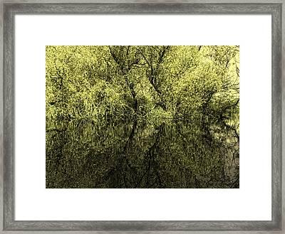 Reflections 8 Framed Print by Vessela Banzourkova