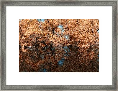 Reflections 9 Framed Print by Vessela Banzourkova