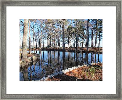 Reflections And Shadows Framed Print by Valia Bradshaw