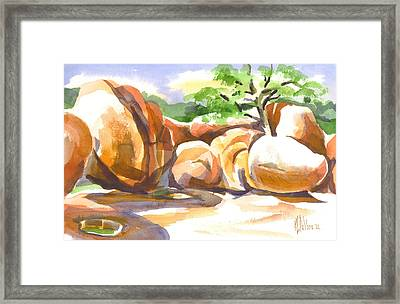 Reflections At Elephant Rocks Framed Print by Kip DeVore