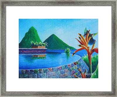 Reflections At Jade - Antillean-crested Hummingbird And Bird-of-paradise Framed Print