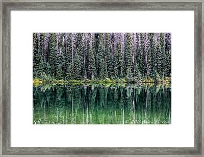 Reflections At Lightning Lake Framed Print by Marie  Cardona