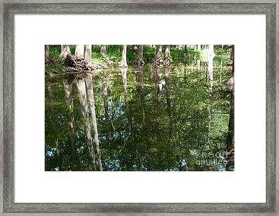 Reflections Framed Print by Barbara Shallue