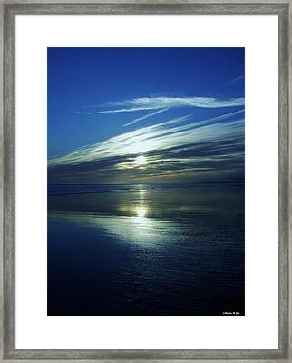 Reflections Framed Print by Barbara St Jean