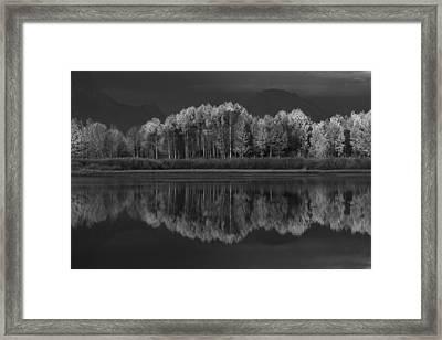 Reflections Framed Print by David Andersen