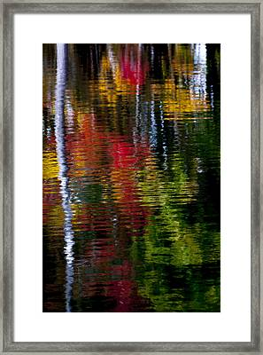 Reflections Framed Print by David Cote