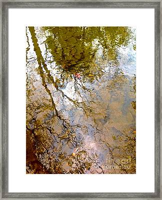 Reflections Framed Print by Delona Seserman