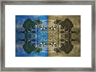 Reflections Framed Print by Betsy Knapp