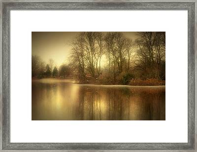 Reflections From The Lake Framed Print