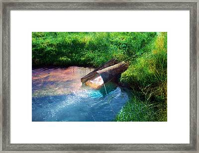 Framed Print featuring the photograph Reflections by Gunter Nezhoda