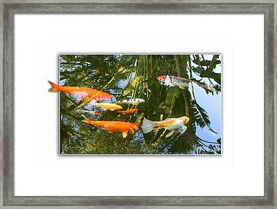 Framed Print featuring the photograph Reflections In A Koi Pond by Mariarosa Rockefeller