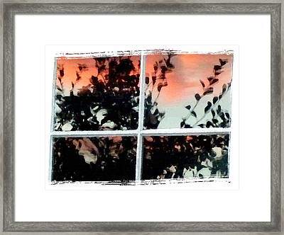 Reflections In An Old Window Framed Print by Will Borden