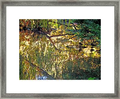 Reflections In Bayou Robert Framed Print