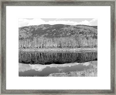 Reflections In Black And White Framed Print