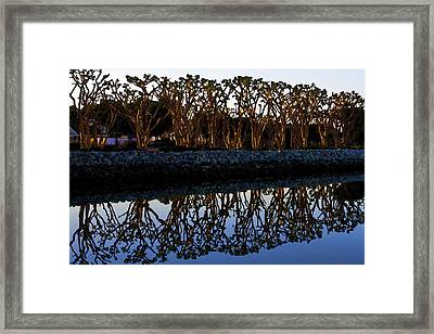 Framed Print featuring the photograph Reflections In First Light by Gary Holmes
