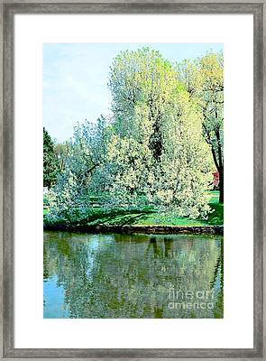 Reflections In Lake Framed Print by Kathleen Struckle