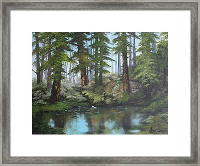Reflections Framed Print by Jean Walker