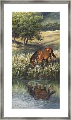 Reflections Framed Print by Kim Lockman
