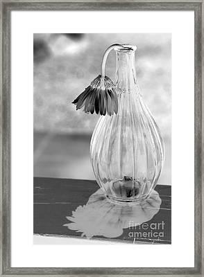 Reflections Lie Framed Print