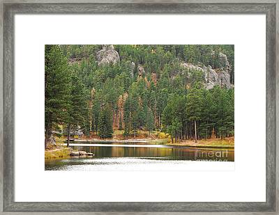 Framed Print featuring the photograph Reflections by Mary Carol Story