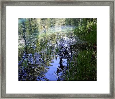Framed Print featuring the photograph Reflections  by Mary Wolf