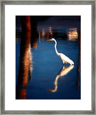 Reflections Framed Print by Michael Pickett