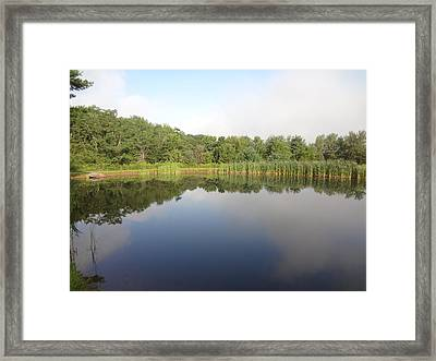 Framed Print featuring the photograph Reflections Of A Still Pond by Michael Porchik
