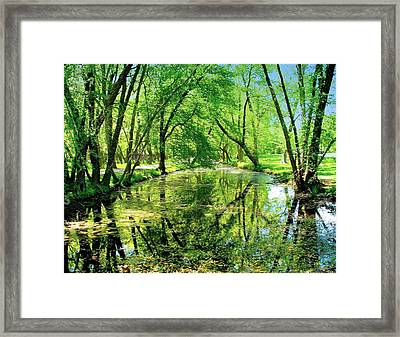 Reflections Of A Summer Day Framed Print by Rick Todaro