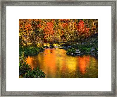 Reflections Of Autumn Framed Print by Leland D Howard