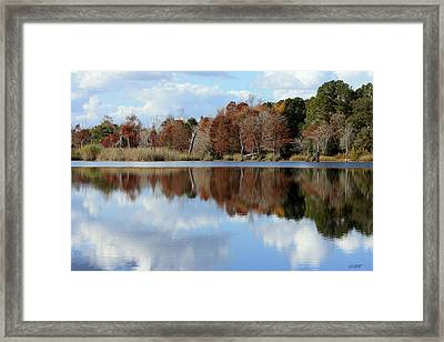 Reflections Of Color Framed Print by Debra Forand