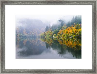 Reflections Of Fall Along The Umpqua Framed Print by Patricia Davidson